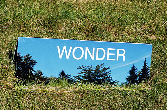 A mirror set in grass that reflects the country like scene around it and has the words WONDER.