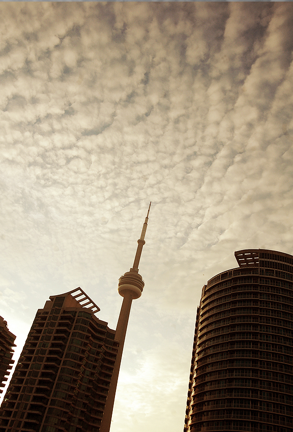 Toronto's CN Tower rising between condo highrises with early evening clouds forming in the sky