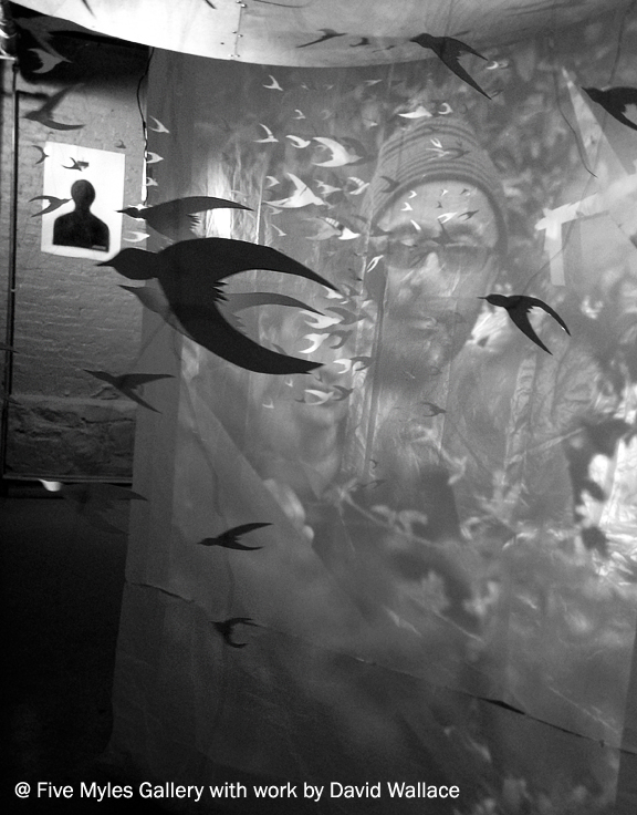 Cut out of birds attached to a mobile that moves around a screen with a photograph of a man projected on it